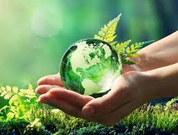 Educación y conciencia ambiental en las ciudades